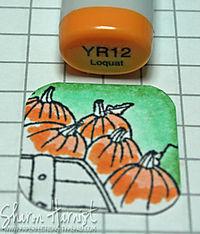 PumpkinFluffInchie2SH