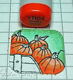 PumpkinFluffInchie3SH
