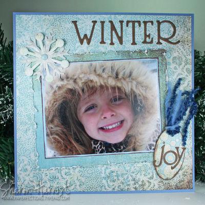 WinterJoyLO1008SH