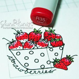 Strawberries2SH
