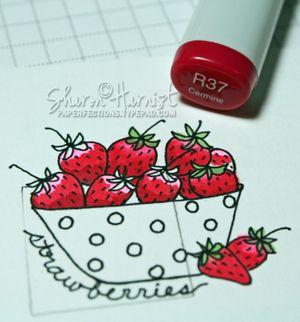 Strawberries3SH