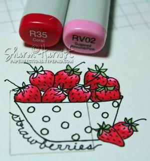 Strawberries4SH