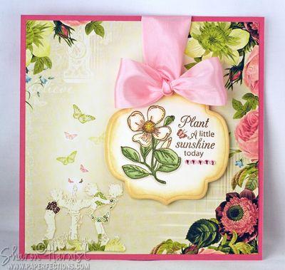 BeautifulBlossoms-MagnoliaSHwm
