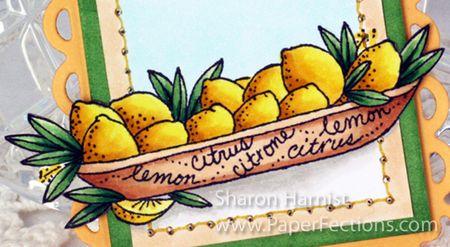 LemonTwinchieMagnetCU-SH