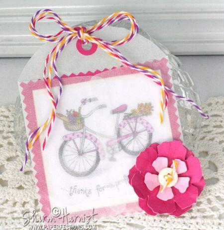 4-BikeGetWell-In-SH