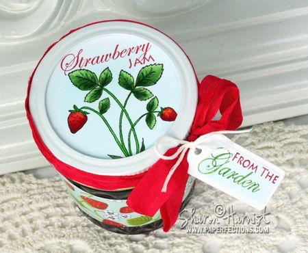 SweetStrawberryTop-SH