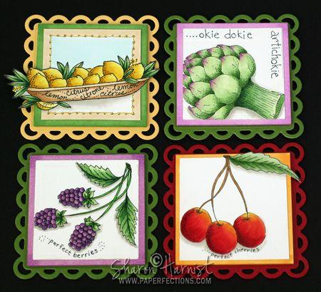 FruitMagnetsPre-SH