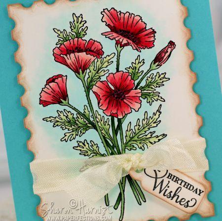 PoppiesBirthdayCU-SH
