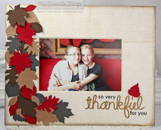 CD2-ThankfulFrame2-SH