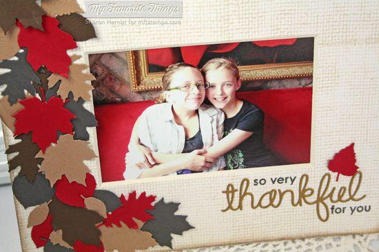CD2-ThankfulFrame2CU-SH