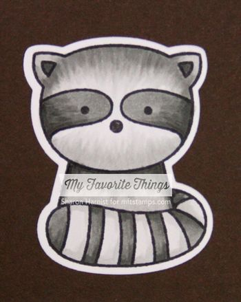 Cute Critters_Raccoon-SM-wm