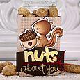 NPL3-SquirrelNuts-SH