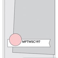 MFT_WSC_197