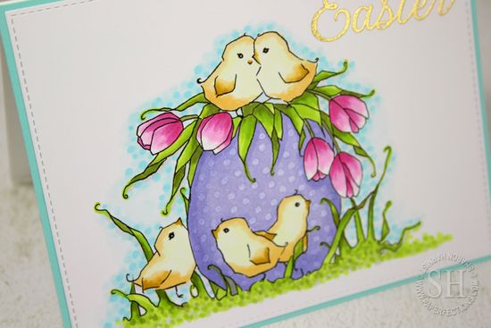 EasterEggChicks-SH