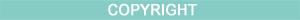 BlueBarDivider-COPYRIGHT