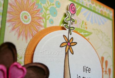 Ginalifesweetflowerclose